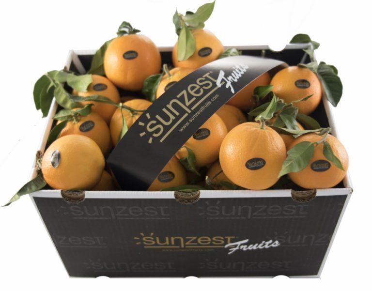 sunzest-fruits-oranges