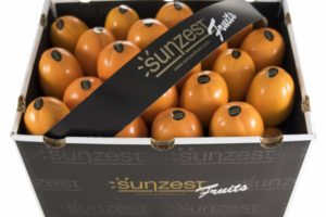 sunzest-fruits-fruits_03